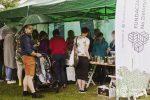 fundacja-na-zielonym-gliwicki-piknik-ekologiczny-1